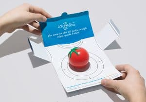LavOnline- Tomato Splat Direct Mail Marketing Campaign